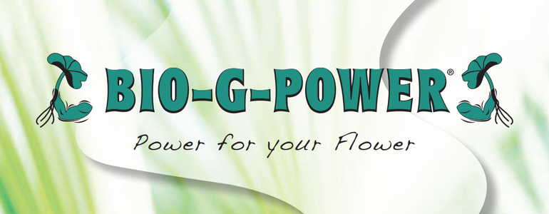© BIO-G-POWER GmbH